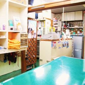 塩田動物病院06